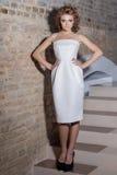 La bella ragazza sexy elegante con la bella acconciatura e la sera luminosa preparano nel vestito bianco da sera e nelle scarpe n Fotografie Stock Libere da Diritti