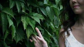 La bella ragazza sorride e tocca la mano delle foglie verdi video d archivio