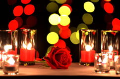 La bella rosa rossa un concetto di amore e del giorno del ` s del biglietto di S. Valentino ha messo sopra fotografia stock