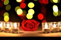 La bella rosa rossa un concetto di amore e del giorno del ` s del biglietto di S. Valentino ha messo sopra immagine stock