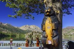 La bella sega dei mestieri nel lago gull fotografia stock libera da diritti