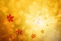 La bella stagione di autunno lascia il fondo illustrazione vettoriale