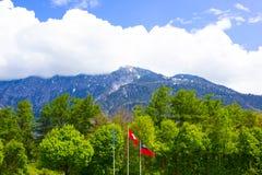 La bella vista delle alpi svizzere Immagine Stock