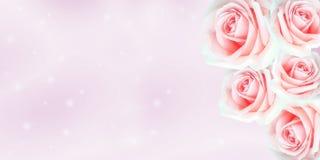 La belle carte de Valentine avec des roses neigent et bokeh sur la couleur rose Image libre de droits