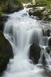 La belle cascade à écriture ligne par ligne dans la forêt Photographie stock