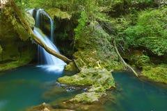 La belle cascade à écriture ligne par ligne dans la forêt photos libres de droits