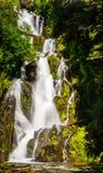 La belle cascade cascadant au-dessus de la mousse a couvert des roches image stock