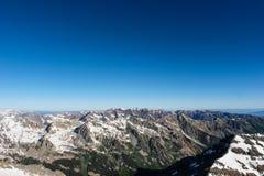 La belle chaîne d'élans, le Colorado Rocky Mountains photo libre de droits