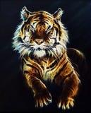 La belle couleur de Tiger Fractal ornemente le fond Photo stock