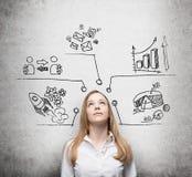 La belle dame pense aux mesures de développement des affaires Des diagrammes, graphique circulaire, icônes d'affaires sont tracés Image stock