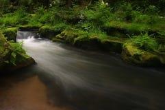 La belle eau Image libre de droits