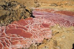La belle eau rose lumineuse très salée congelée de cônes avec les cristaux blancs du sel images stock