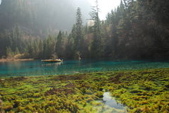 La belle et colorée eau dans JiuZhai, Chine Photographie stock libre de droits