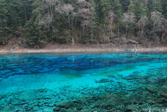 La belle et colorée eau dans JiuZhai, Chine Image stock