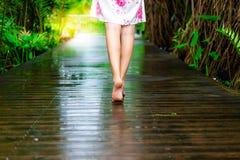 La belle femme avec du charme marche au passage couvert en bois au beautif photographie stock libre de droits