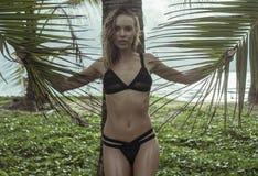La belle femme blonde de charme portant des vêtements de bain noirs un bel été tenant le palmier part dans des ses mains Photographie stock libre de droits