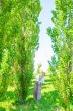 La belle femme de style de boho marche sur l'herbe et appr?cie l'heure d'?t? en parc image libre de droits