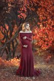 La belle femme enceinte avec les cheveux blonds en longue robe rouge et collier brillant se tient dans la for?t, souriant douceme photo libre de droits