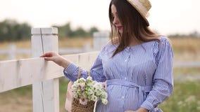 La belle femme enceinte dans la marche bleue de robe entendent la ferme Sac tricoté avec le bouquet des fleurs Fond d'arbre banque de vidéos