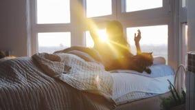 La belle femme heureuse de brune se trouvant sur le lit avec ses chats de ragondin du Maine réveille des bouts droits dans sa cha clips vidéos