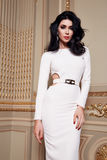 La belle femme sexy dans la collection à la mode d'automne de robe élégante de long maquillage de cheveux de brune de ressort a b Images stock