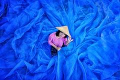 La belle femme thaïlandaise moissonne l'indigo sur le plancher net bleu photo stock