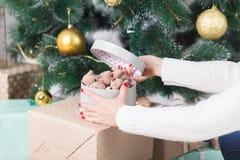 La belle fille accroche un jouet de Noël sur l'arbre de Noël Bonnes fêtes ! images libres de droits