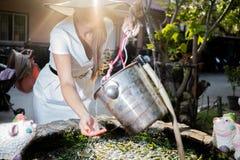 La belle fille dans un chapeau et une robe blanche tire l'eau d'un puits ? la lumi?re du soleil de matin photos stock