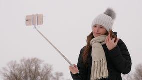 La belle fille de l'adolescence faisant le coffre-fort au téléphone sourit au parc d'hiver clips vidéos