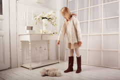 La belle fille de l'adolescence pose dans le studio de photo Photo stock