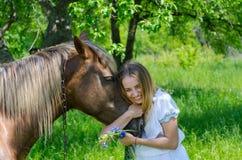 La belle fille embrasse le museau du cheval de châtaigne et rit Photographie stock libre de droits
