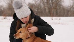 La belle fille frotte et se sent désolée pour son parc d'hiver de chien Photographie stock