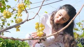 La belle fille prend un groupe de raisins Une grande vigne clips vidéos