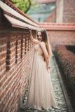 La belle fille sexy avec la longue forme parfaite de cheveux et de robe a bronzé le corps possing près du mur Photographie stock libre de droits