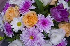 La belle fleur de ressort de couleur pourpre Photo stock
