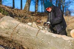 La belle jeune femme en verres coupe un grand arbre de cendre sur le bois pour l'hiver photographie stock libre de droits