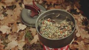 La belle jeune femme heureuse fait cuire le thé sur un brûleur à gaz, près de la rivière dans la forêt d'automne, des feuilles de clips vidéos