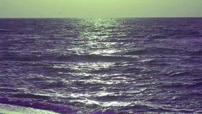 La belle mer ondule le soir banque de vidéos
