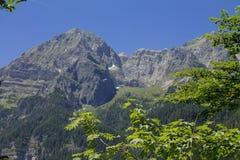La belle nature de montagne des Alpes italiens Images libres de droits