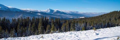 La belle neige de vue panoramique d'hiver a couvert des montagnes image libre de droits