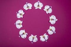La belle orchidée blanche fleurit sous forme de cercle sur le fond foncé photo stock
