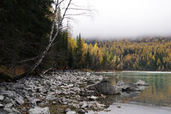 La belle rivière de kanas en brouillard Photos stock