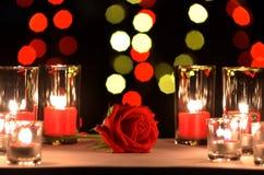 La belle rose de rouge un concept de l'amour et du jour du ` s de valentine a mis dessus Image stock
