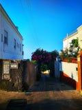 La belle rue étroite de Capri sur une île italienne dans le méditerranéen image libre de droits