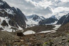 La belle vue de l'des montagnes aménagent en parc en montagnes d'Altai Photo libre de droits