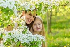 La belles mère et fille dans une floraison font du jardinage au printemps Image stock