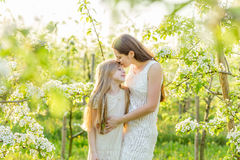 La belles mère et fille dans une floraison font du jardinage au printemps Photographie stock libre de droits