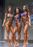 La belleza de la Florida gana título del bikini en Toronto Imagen de archivo libre de regalías