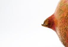 La belleza de la granada Fotografía de archivo libre de regalías