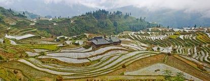 La belleza de la terraza 3# de Hani Imágenes de archivo libres de regalías